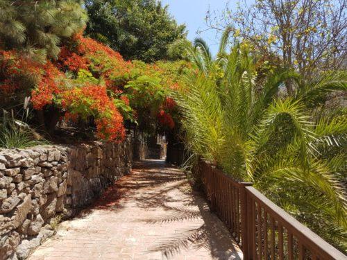 Palmitos-Park-Gran-Canaria-belépő