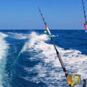 tengeri-nagyhalas-sporthorgaszat