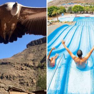 Gran Canaria Aqualand Palmitos park program jegy 0