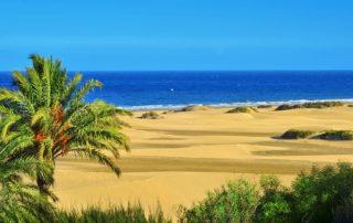 Gran-Canaria-meglepetései-járatlan-útjai-3