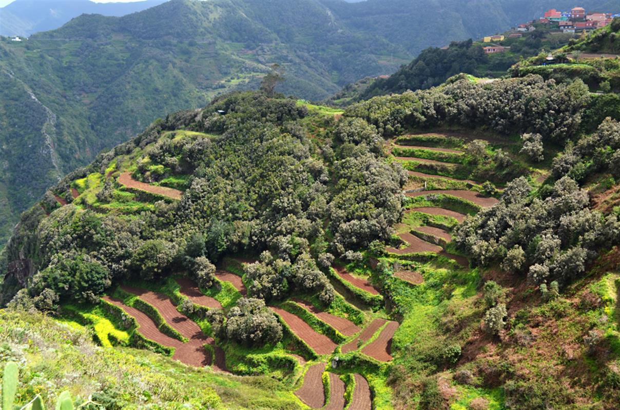 Tenerife-én-szememmel-Erre-érdemes-figyelnie-Tippek-2-rész-1