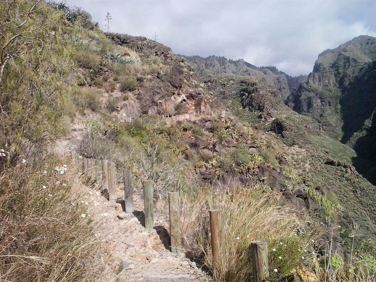Tenerife-turak-Barranco-del-Infierno