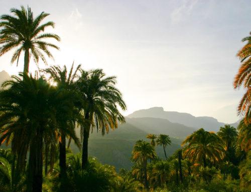A kincsekben gazdag Gran Canaria csodái, 2. rész